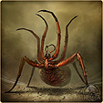 Огненный паук