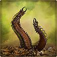 Ядовитый червь