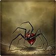 Ядовитый паук